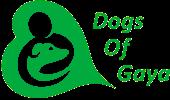 Dogs Of Gaya